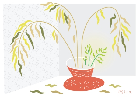 plantlife2